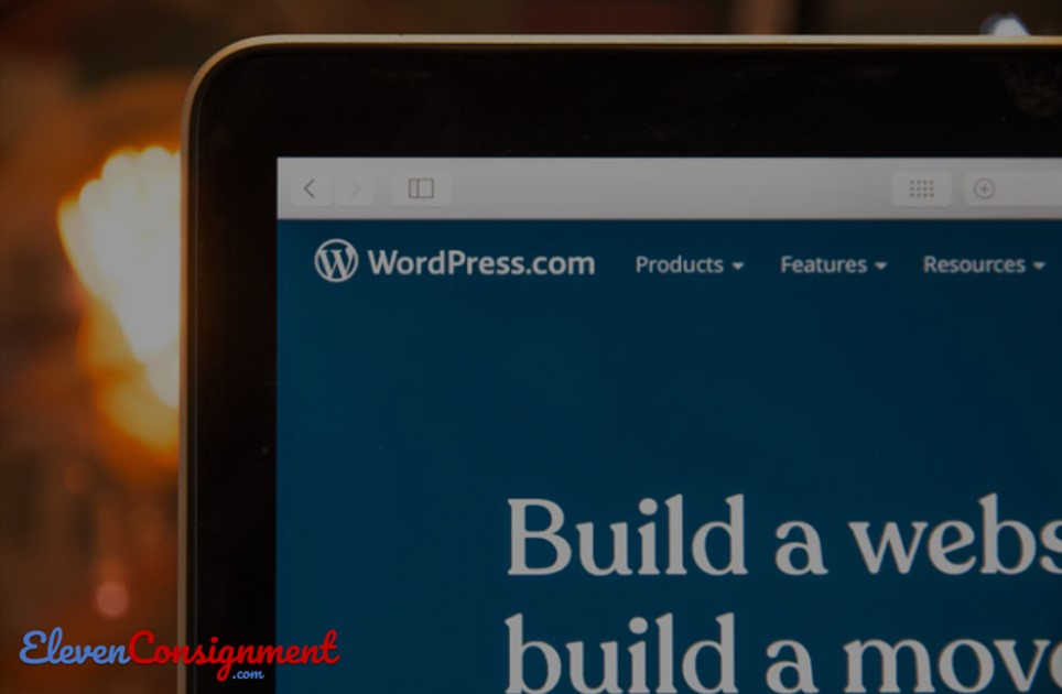 Review Di WordPress